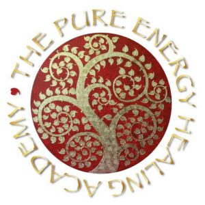 pure-energy-healing-academy-2